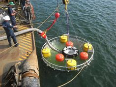 Coast Guard demonstrates cold weather oil response technology
