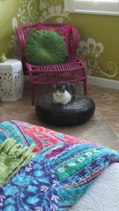 the kitty sets the room off to purrfection