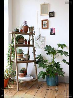 Recanto com plantas
