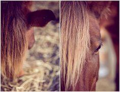 Unbenannt | Flickr - Fotosharing!