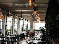 cuesta? $200.00 por persona. The Good Place, Places To Go, Table Decorations, Amazing Places, Boyfriends, Videos, Home Decor, Terrace, Romantic Candles