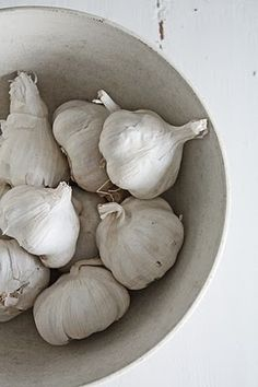 """garlic   -   the """"cancer killer"""" garlic. Garlic is the one """"common"""" food that is head and shoulders above teh rest in fighting all forms of cancer, according to many recent studies"""