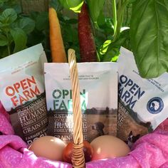 Rubicon Days: Open Farm Makes This Vegetarian Feel Good About Feeding Her Dogs #sponsored #dogs #certifiedhumane