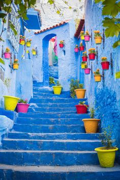 This won the award of the cutest street in Chefchaouen, just wonderful
