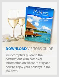 Maldives visitor guide - Official Ministry of Tourism Male Maldives, Maldives Beach, Visit Maldives, Maldives Travel, Relaxing Places, Underwater Life, Paradise On Earth, Beautiful Sunrise, Ultimate Travel