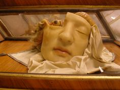Cabinets in 'Le Specola', Florence. An exhibition of 17th & 18th century anatomical wax models created & used for teaching. #anatomicalwax #specola #wax #francescarossi #restauro #restore #cera #ceroplastica www.rossirestauro.com