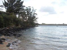 Enjoying the sight of the bay at the morae in Kerikeri.