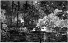 Points of Departure III: By Peter Milton - resist ground etching and engraving  plate: copper 24 x 38 inches, edition: 175