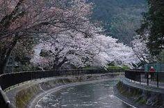 Resultado de imagen para canales japon agua