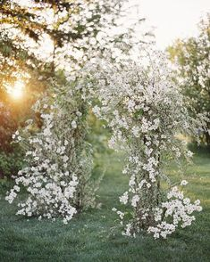 Beautiful and ethereal outdoor wedding ceremony at sunset - white wedding blooms White Wedding Flowers, Floral Wedding, White Flowers, Aisle Flowers, Wedding Ceremony Decorations, Wedding Ceremonies, Decor Wedding, Garden Wedding, Summer Wedding