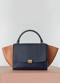 Medium Trapeze Handbag Multicolour in Python - Fall / Winter Runway 2014 | CÉLINE