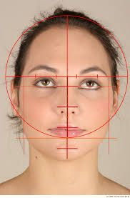 Картинки по запросу proporciones del rostros