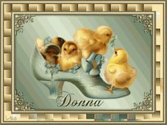 Donna - Chicks in a Shoe