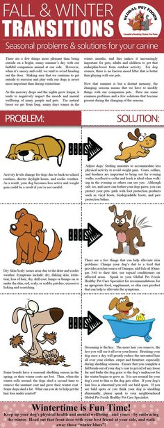 Make sure that you and your pets are ready to enjoy the season with these helpful tips!!