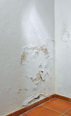 Kellerabdichtung von innen - Most creative decoration list Water Damage Repair, Rustic Bathrooms, Home Repairs, Basement Remodeling, Basement Waterproofing, Diy Bedroom Decor, Home Decor, Interior Design Living Room, Home Improvement