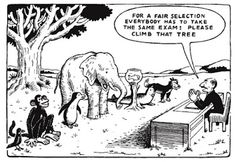 This is one of my favorite cartoons that I found at 'For the Love of Learning' Blog, to illustrate the need for differentiation.