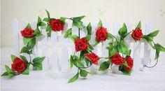 rose vine plant - Google Search