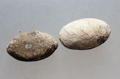 L6 Ancient Roman Military Lead Sling Bullet Lot of 2x in Antiques, Antiquities…