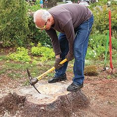 Photo: William Wright   thisoldhouse.com   from How to Create a Tree-Stump Planter