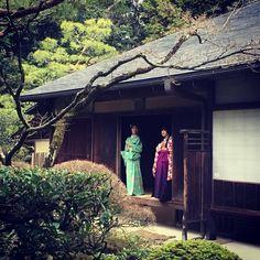 #kyoto #japon #temple #daitokuji
