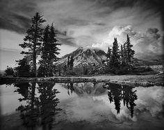 Mount Rainier National Park: Mountain Rainier