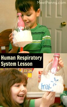 Human Respiratory System Lesson