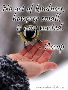 No act of kindness, however small is ever wasted - Aesop http://madamedeals.com/karlas-korner-kindness-still-counts/ #inspireothers