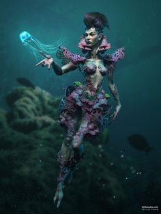 Pora Palmata | Deep Sea Creature