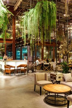 Vivarium restaurant in Bangkok by Hypothesis: love love the furniture here! Also...I love the hanging ferns but may run the risk of making it more rainforest than warehouse if have too many haha