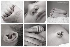 Newborn Photo shoots