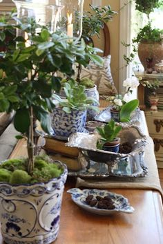 Love blue and white china.especially with the green of plants. Blue And White China, Love Blue, Blue China, Enchanted Home, White Springs, Chinoiserie Chic, White Houses, Delft, White Decor
