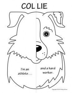 Zoo Animals Symmetry Activity Coloring pages. Math with