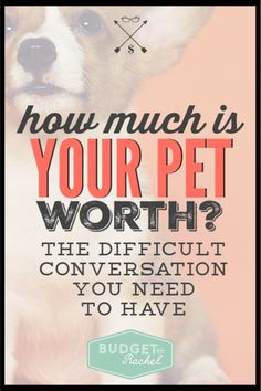 Thinking about getting a new pet? These are the expenses to expect. Find out the true cost of a new animal to the family and how to budget for pets. #pets #budget #budgeting #moneysavingtips Money Saving Challenge, Money Saving Tips, Money Tips, Budgeting Finances, Budgeting Tips, Debt Snowball Worksheet, True Cost, Thing 1, Budgeting Worksheets