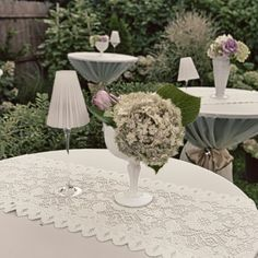 All White Event hydrangea