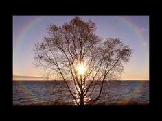 ▶ Garnet Rogers: Summer Lightning - YouTube