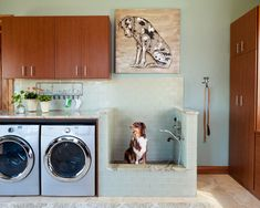 Dog Shower for the Laundry Room