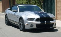2010 Shelby Super Snake Mustang GT500....It'd be perfect if it were purple(: