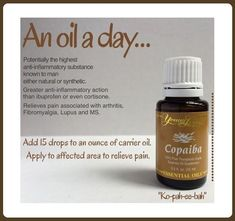 """to Use Essential Oils for Acne Copaiba essential oil - """"Ko-pah-ee-bah"""" Young living essential oils heal naturally sponsor ID by juana Copaiba Essential Oil, Essential Oils For Pain, Essential Oils Guide, Essential Oil Diffuser Blends, Essential Oil Uses, Young Living Essential Oils, Young Living Copaiba, Thieves Essential Oil, Copaiba Oil Uses"""