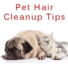 Getting rid of pet hair - furniture, carpets, etc.   It takes a bit of work - but just vacuuming doesn't do it!