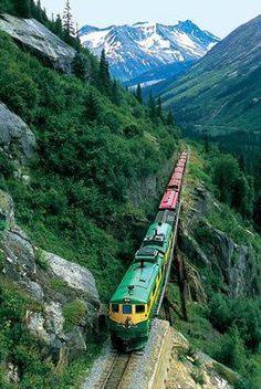 Trein door berglandschap