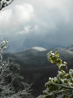 Mt. LeConte as seen from Curry Mountain Trail.  Hiked to the top several times.  Great view!  JKR