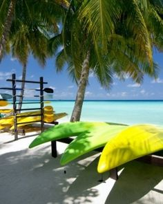 One&Only Reethi Rah Reethirah Island, Maldives Beach Beachfront Luxury Outdoor Activities Romance Romantic Tropical Wellness tree water palm Ocean caribbean Sea tropics arecales shore yellow palm family sunlight plant lined sandy Maldives Luxury Resorts, Beach Resorts, Male Maldives, Maldives Vacation, Maldives Beach, The Places Youll Go, Places To See, Bungalow Resorts, Overwater Bungalows