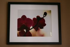 Framed and Matted 8x10 Photograph Orchid by HandmadeBySweetPea, $25.00