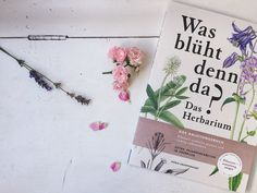 Hey Herbarium! Ab in die Blumenwiese & -5% Aktion - Sophie fuehrt No One Loves Me, First Love, Winter, Action, Books, Plants, Summer, Nice Asses, Winter Time