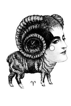 Aries by Carolina Espinosa