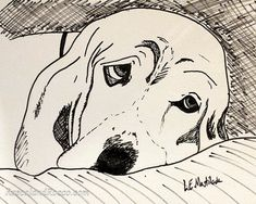 #CustomPetPortraits #PetPortrait Gorgeous #illustration of your beloved #pet drawn from your photograph. Hand drawn in high quality pen and ink on fade resistant artists #art #petart #drawing #fineart #keepsake #gift #animallover #cat #dog #animals #animalart #arist #Etsy via @LEMastilock