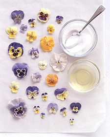 Tasting Pansies - Martha Stewart Dessert  Sugaring fresh flowers