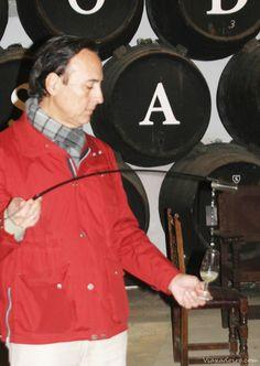 Rafael Salado, en sus bodegas dándonos a catar uno de sus vinos, durante la visita guiada a la bodega.