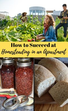 """Homesteading doesn't have to include land and a big barn! You can homestead wherever you find yourself, """"How to Be Self-Sufficient in an Apartment""""! Homestead Apartment, Apartment Gardening, Homestead Living, Amish White Bread, Low Acid Recipes, Modern Homesteading, Hobby Farms, Grow Your Own Food, Sustainable Living"""