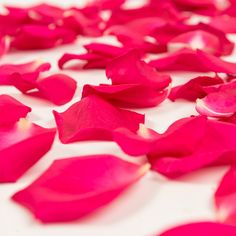 Bloomingmore farm-direct rose petals add the perfect finishing touch to anniversaries, wedding décor, and classic bride and groom send-offs.  #bloomingmore #farmfreshflowers #freshflowers #flowers #flower #farmfresh #farmdirectflowers #farmdirect #bloom #blooms #roses #rosepetals #flowerpetals #petals #flowergirl #throwingitdown #letsbloomtogether #powerofflowers